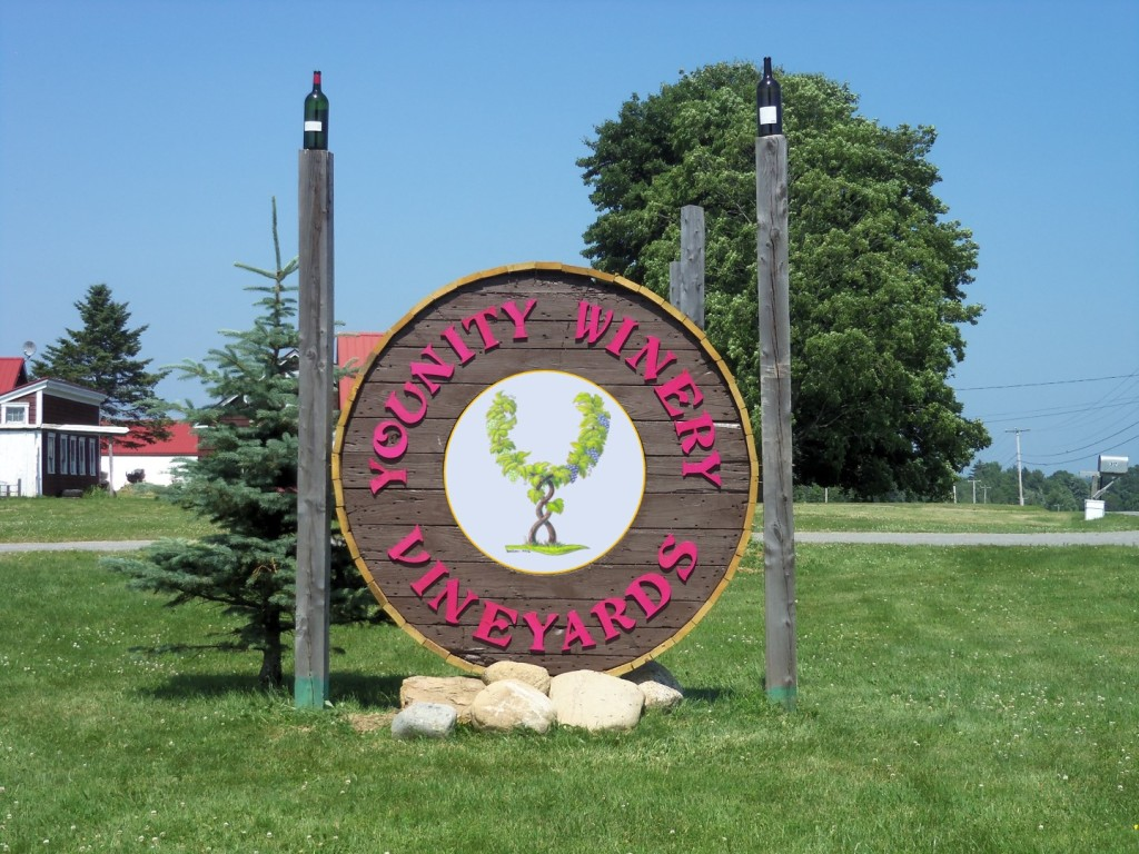 THS 64: Younity Winery